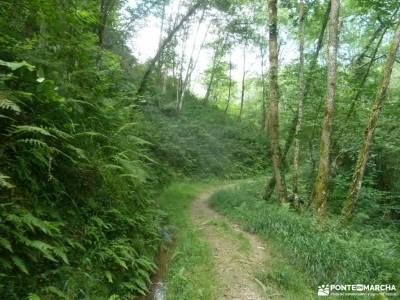 Parque Natural Pagoeta_Valle Leitzaran;cordilleras béticas la pedriza la charca verde vacaciones pu